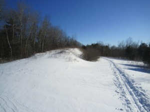 Heber Down Conservation Area: Cross-country ski trail