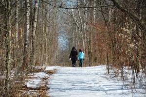 Long Sault Conservation Area: Cottontail Rabbit Trail