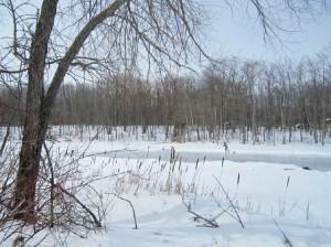 Terra-Cotta-Conservation-Area-Wolf-Lake-Shoveling